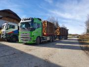 Holztransport-LKW-Volvo